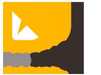 ASO Dragon Logo